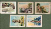 Selection Chinese tobacco cards cigarette cards CHINA RARE #236